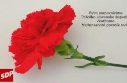 Red-Carnation-2560X1600-1920x1080